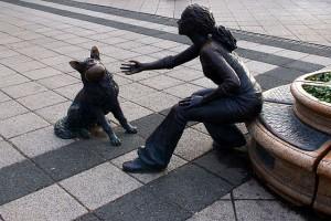 Doggie and human